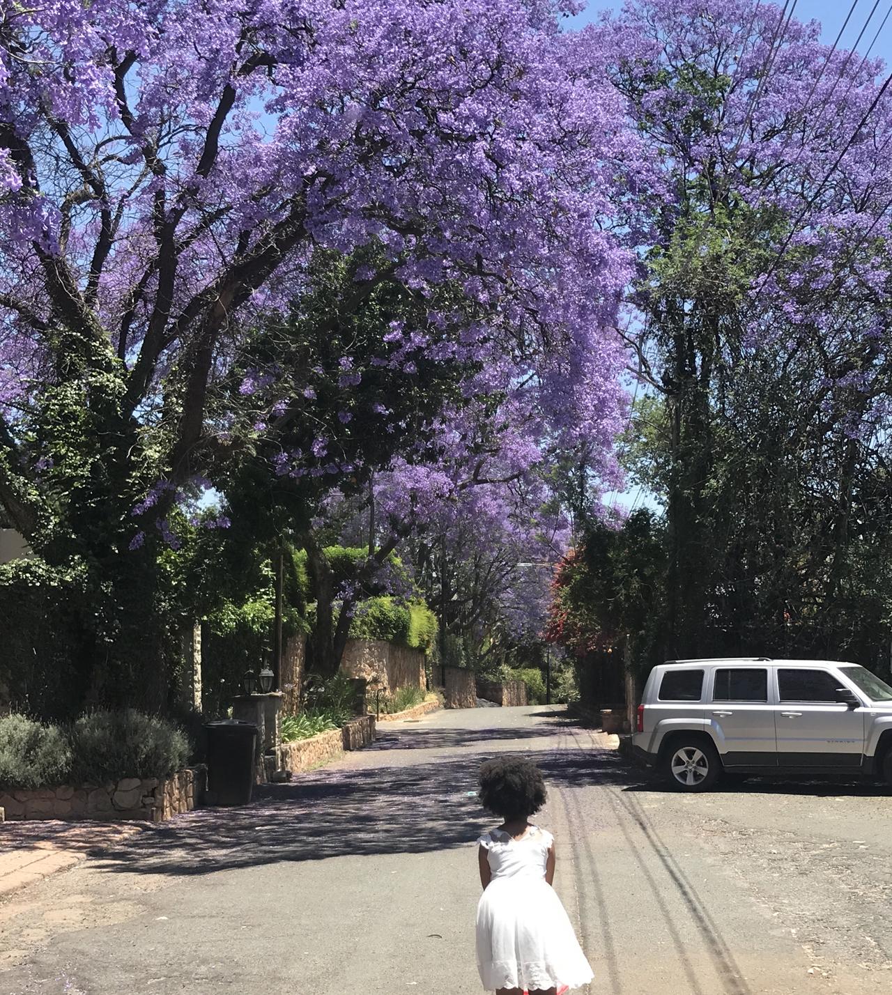 Gabbi taking a stroll